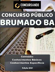 APOSTILA PREFEITURA DE BRUMADO BA 2021 ASSISTENTE SOCIAL