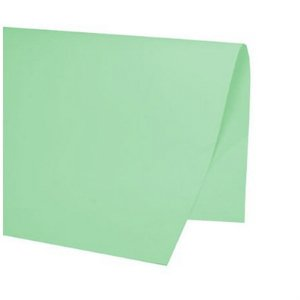 PAPEL COLOR SET 48X66CM VERDE