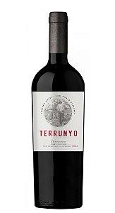 Concha Y Toro Terrunyo Carménère - 750ml