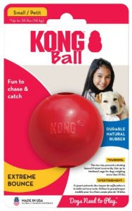 Brinquedo Funcional Kong Ball With Hole Small