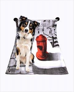 Tapete Higiênico Lavável B ART Canino Médio
