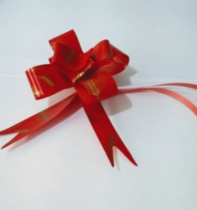 Laço Fácil 18Mm Fantasia Vermelho R.254301 Unidade