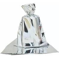Saco para Presente Cromus Metalizado Prata 20cm x 29cm (Não Acompanha o Laço) Unidade