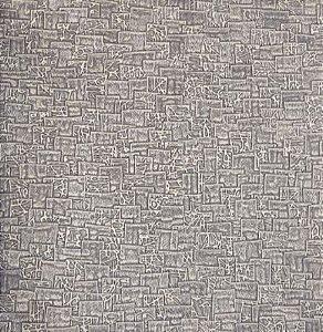 Papel de Parede Platinum PN2834 - 0,53cm x 10m