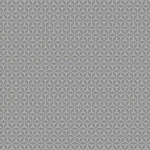 Papel de Parede Hexagone L424-19 - 0,53cm x 10m