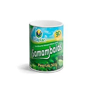 Fertilizante Pastilhas Samambaias – 50 g
