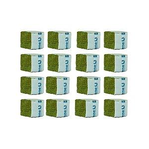 CULTILENE STONE WOOL CUBE - Kit com 16