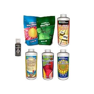 Kit Maxiseries Estimulante - General Hydroponics