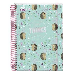 Caderno de ouriço - DAC - 10 matérias