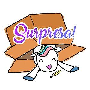 BIG caixa de itens surpresa!! R$ 300 em itens por R$ 250