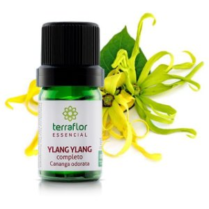 oleo-essencial-ylang-ylang-terra flor