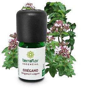 Óleo essencial Orégano - Terra Flor