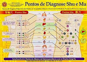 MAPA PONTOS DE DIAGNOSE SHU E MU