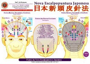 MAPA DA NOVA ESCALPOPUNTURA JAPONESA