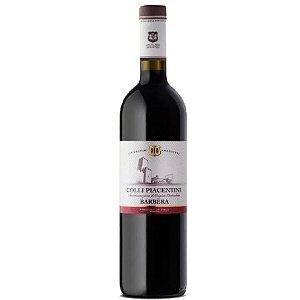 Vinho TInto Italiano Colli Piacentini Barbera 2018