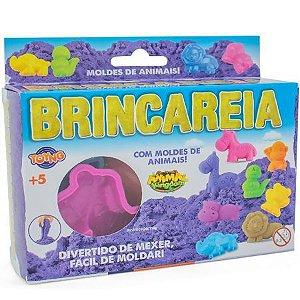 Kit de Areia Brincareia Moldes de Animais - Toyng