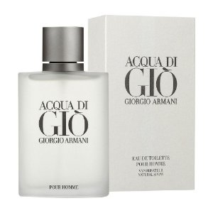 Perfume Acqua Di Gio Pour Homme 100ml Masculino Giorgio Armani
