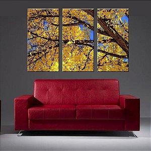 Quadro Natureza Ipe Amarelo Conjunto 3 Telas em Canvas