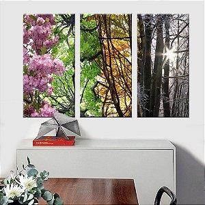 Quadro Natureza Elementos  3 Telas Decorativas