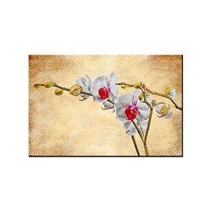 Quadro Tela Decorativa Pintura Orquidea