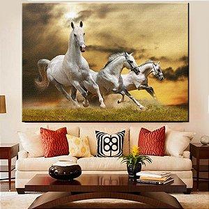 Quadro Canvas Cavalos