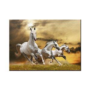 Quadro Tela Decorativa Cavalos