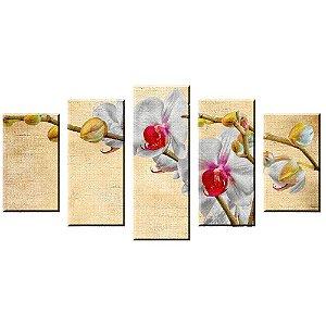 Conjunto 5 Telas Decorativas Orquidea Pintura