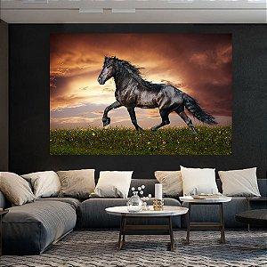 Quadro Decorativo Cavalo Negro