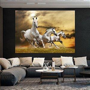 Quadro Decorativo Cavalos Selvagens