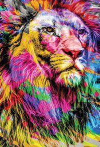 Bíblia NTLH YouVersion The Lion Colorida Nova Tradução na Linguagem de Hoje