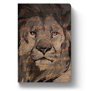 Bíblia NVI Luxo Slim - Aslam - Letra Grande