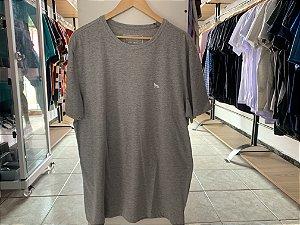 Camiseta masculina acostamento cinza EG