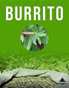 Erva Mate Carvalho Burrito (500g)