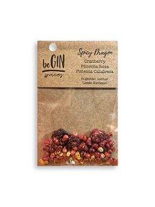 Sache Spicy Dragon - 7 gr Begin Spices - Preparo Gin Tônica