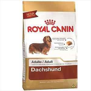 Royal Canin para Cães Adultos da Raça Dachshund 7,5KG