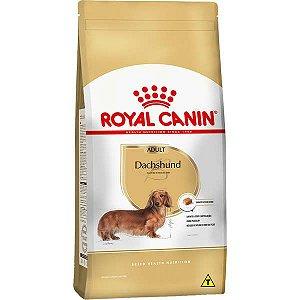 Royal Canin para Cães Adultos da Raça Dachshund 2,5KG