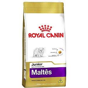 Royal Canin Junior para Cães Filhotes da Raça Maltês 1KG