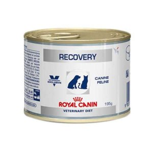 Royal Canin Cães e Gatos Recovery Wet Lata 195GR