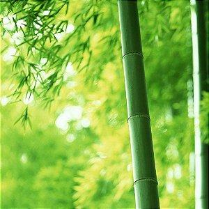 Água Perfumada Ekomist Bambu - 1L