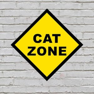 Placa de Parede Decorativa: Cat Zone