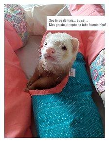 Tubo Funny - para Ferret