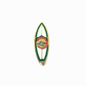 Pin, DSA 2019, Prancha das cores das classes, Pesquisador, Desbravadores