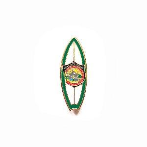 Pin, DSA 2019, Prancha das cores das classes, Pesquisador, Conquistadores
