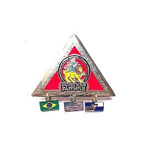 Pin Forever Faithful, triangulo com pingentes e fundo nas cores das classes