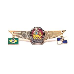Pin Forever Faithful, logo com asas, bandeirinhas Brasil e Desbravadores