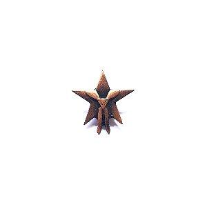 Pin, Estrela com lenço DBV