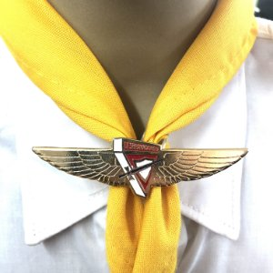 Prend. de lenço, Logo DBV com asas