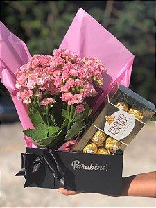 Gift Box Elegância Com Ferrero Rocher