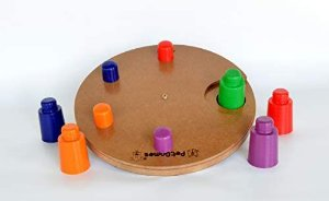 Pet Games - Jogo Interativo Disco