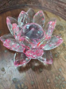 Flor de Lotus Vidro